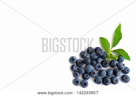 Blueberries with leaves on white background on right hand side