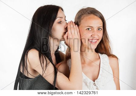 Two happy young girlfriends whisper talking, society gossip, rumor, rumour, on the background of white wall
