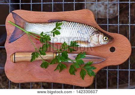 chub knife and parsley on a cutting board