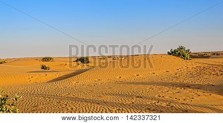 Landscape Of Indian Thar Desert With Copy Space