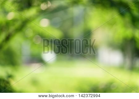 city park blurred background for your project, real optical blur in high resolution
