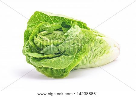 green salad head isolated on white background