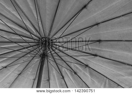 The Bottom To Top View Of Umbrella