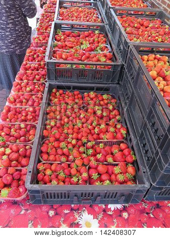 Boxes of Strawberries on market stall in Duch village