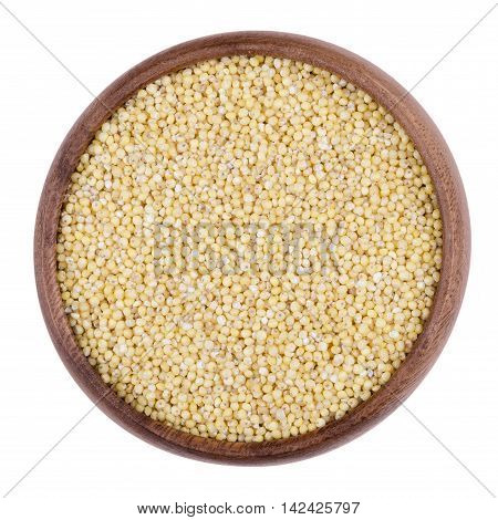 Yellow millet in a wooden bowl on white background. The small seeds are grown as cereal crops or grains for fodder and human food. Edible, raw and organic food. Isolated close up macro photo.