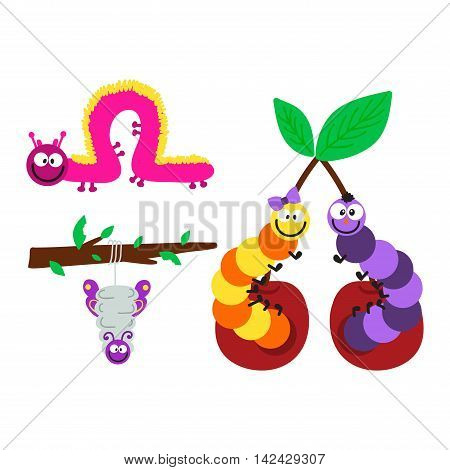 Cute hand drawn crawling caterpillar tree insect element funny little bug. Nature larva caterpillar wildlife bug vector illustration. Cartoon caterpillars cute character different animal worm.