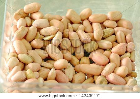 Dry groundnuts seeds / peanut seeds kept for drying under the sun
