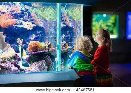 Little boy and girl watching tropical coral fish in large sea life tank. Kids at the zoo aquarium.