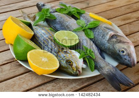 Fresh seabass and salema porgy with lemon lime basil and spearmint in white porcelain plate on old wooden table side view
