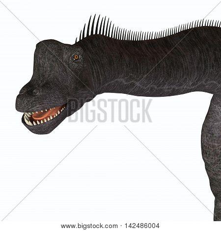 Brachiosaurus Animal Head 3D Illustration - Brachiosaurus was a herbivorous sauropod dinosaur that lived in the Jurassic Period of North America.