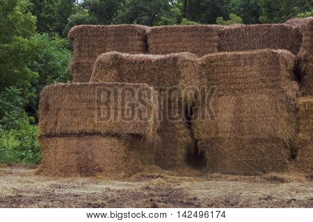 Rectangular bails of hay piled upon each other.