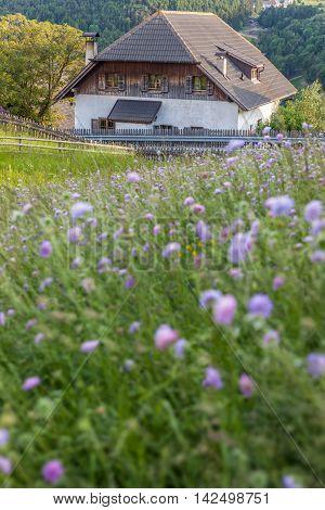 Farm On The Ritten Near Mittelberg