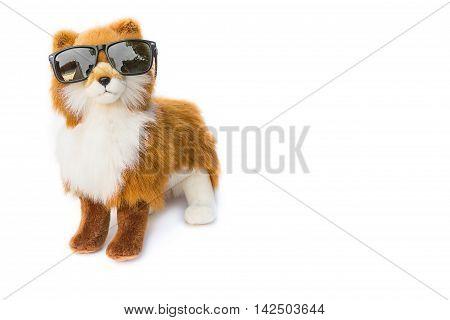 Dog toy wearing Black sunglasses. beautiful  on white background
