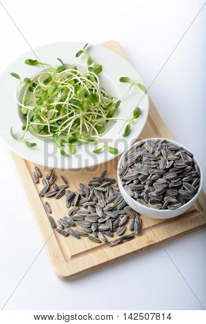 green young sunflower sprouts on salad plate and sunflower seeds on white background