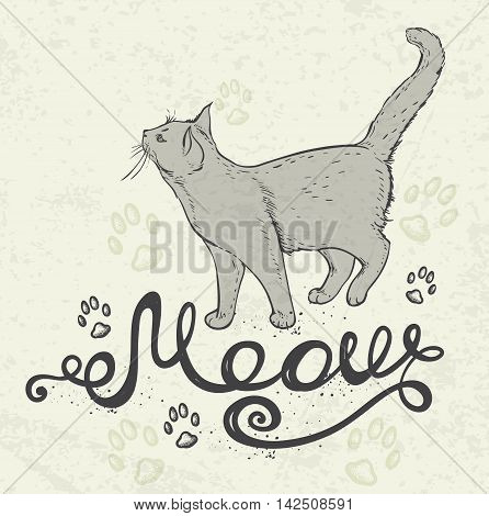 Background with cat and lettering