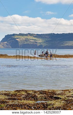 ROBIN HOODS BAY ENGLAND - AUGUST 12: Various people on beach fishing and crabbing. In Robin Hoods Bay North Yorkshire England. On 12th August 2016.