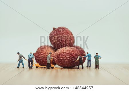 Miniature farmers loading lychees on pallet truck.
