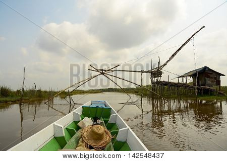 Beautiful green nature view of white samet tree and Water mimosa at Talay-Noi Wetland in Phattalung province ,Thailand