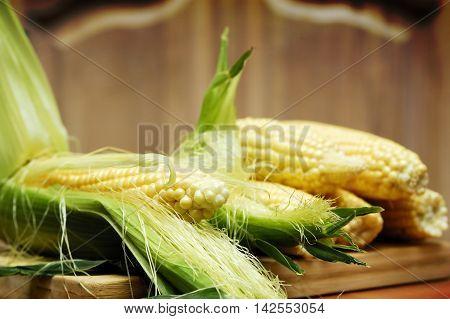 Wery swetty corn. The sweety food. Summer.