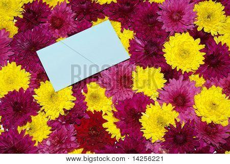 flowers background love letter conceptual