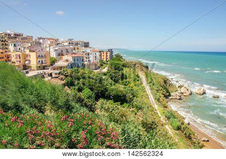 Mediterranean Maquis or Macchia Mediterranea at Rodi Garganico village in Apulia, Gargano, Italy