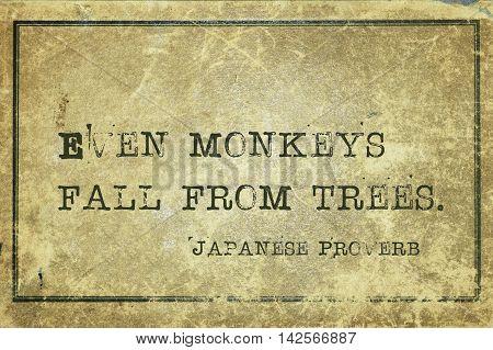 Monkeys Fall Jp
