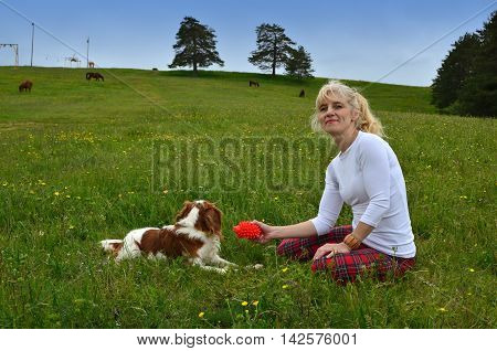 Playful Dog And Woman In The Countryside