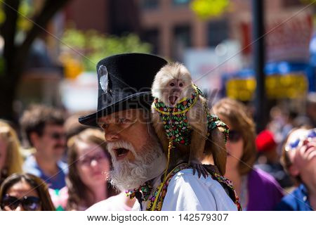 York PA - May 8 2016: A bearded man with a monkey entertained people at the City of York Annual Mother's Day Street Fair.