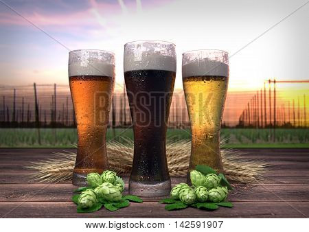 three kinds of beer with barley and hops on wooden desk with hop-garden on background - 3D render