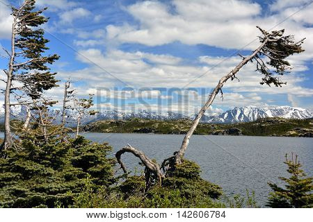 Alaskan lake east of Skagway on a clear day