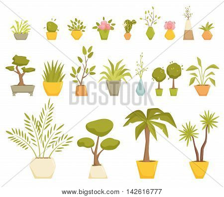 Plants in pot set. Interior home and office potted plants. Houseplant cartoon vector illustration. Interior decoration. Flowerpot drowth and gardening. Dracaena, Tsukasa, palm, myrtle, cactus, violet