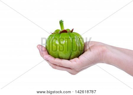 Garcinia Cambogia Fresh Fruit On Human Hand, Isolated On White. Fruit For Diet And Good Health.