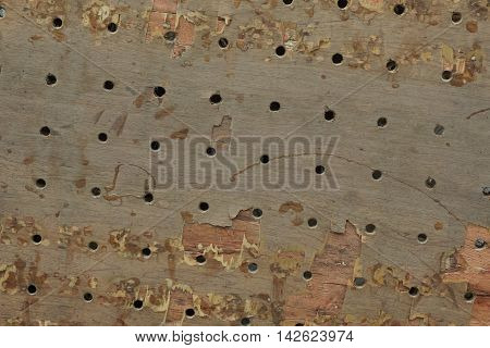 wood board with drilling hole texture for background used