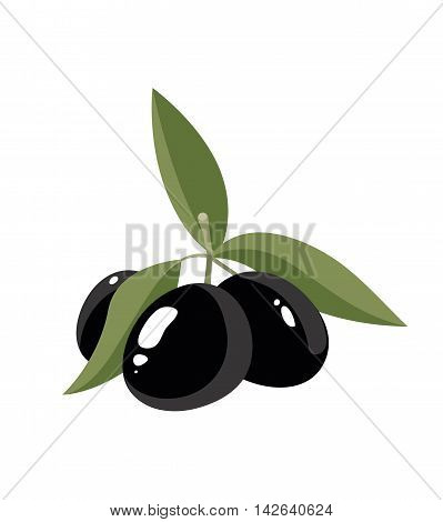 vector illustration of three black Olives with leafs isolate on light background. Pictures for your personal design project.