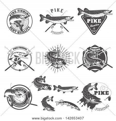 Pike fishing labels. Fishing club team emblems templates. Vector illustration.