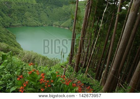 amazing beautiful landscape view of green lagoon Lagoa do Rasa or Rasa lake inside a volcano crater next to a tree forest and flowers in Sao Miguel island Azores of Portugal in travel destination concept