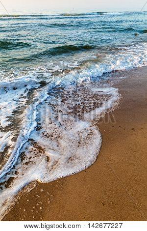 Sea waves in the white foam on the sandy beach. Dawn.