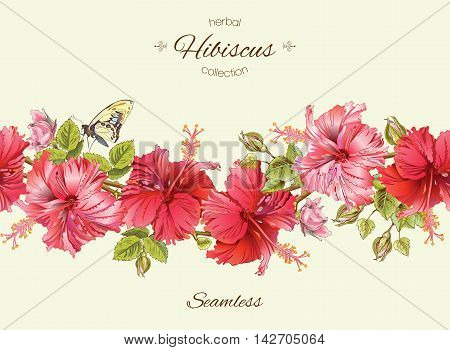 Vector hibiscus seamless horizontal border. Background design for herbal tea, natural cosmetics, health care products, homeopathy, aromatherapy. Best for packaging design.