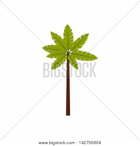 Palm woody plant icon in flat style isolated on white background. Flora symbol