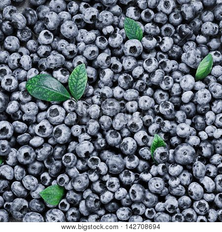 Juicy and fresh blueberries with green leaves background