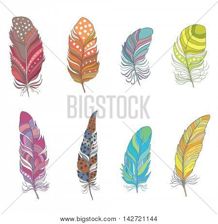 Set of Colorful Decorative Bird Feather for Boho Style. Vector.
