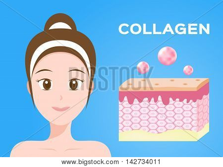 collagen vector icon . collagen with skin and model