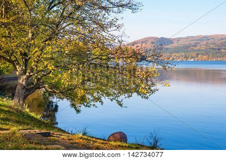Autumn scenery with blue water od lake and yellow tree foliage in sunny day.