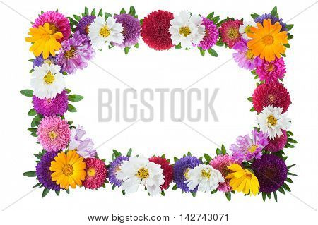 colorful floral frame isolated on white background