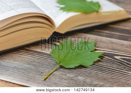 Open Book on Wooden Desk with Autumn Leaves Close up. Education Concept