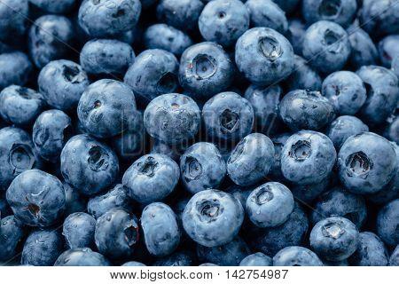 fresh blueberries background, closeup view