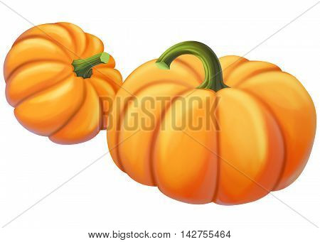 Two yellow pumpkin on a white background