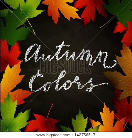 Frame of autumn leaves painted on black chalkboard. Sketch, design elements with Autumn colors handwritten words. Vector illustration.