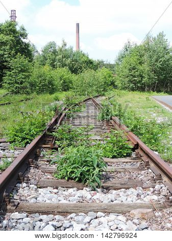 Old railway track with plants growing on the railroad.