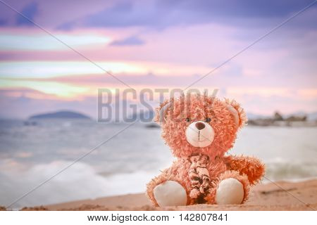 Toy bear sitting on the beach,seascape concept